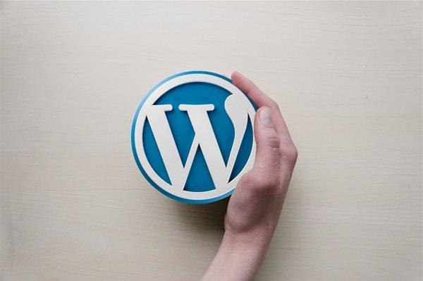 Devadigm designs and develops WordPress websites